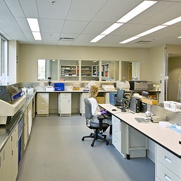 Clinical Laboratories